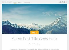 Serene WordPress Theme by Elegant Themes