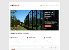 Pure Paradise WordPress Theme via ThemeForest