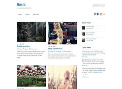 Basic WordPress Theme by Themify