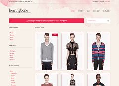 Herringbone WordPress Theme by cssigniter