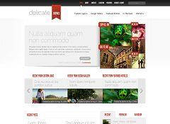 DelicateNews WordPress Theme by Elegant Themes