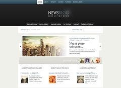 eNews WordPress Theme by Elegant Themes