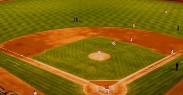 The best themes for baseball and softball teams, websites, leagues, and blogs.