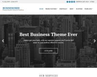 Business3ree WordPress Theme by cssigniter