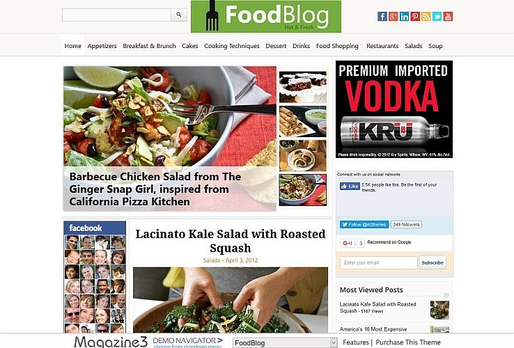 FoodBlog WordPress Theme by Magazine3