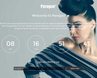 Paragon WordPress Theme via Mojo Marketplace