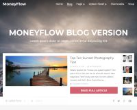 MoneyFlow WordPress Theme by MyThemeShop
