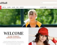Baseball/Softball WordPress Theme by TemplateMonster