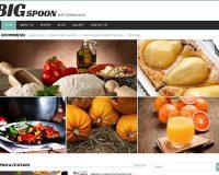 Big Spoon WordPress Theme by TemplateMonster