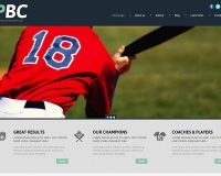 Professional Baseball Club WordPress Theme by TemplateMonster