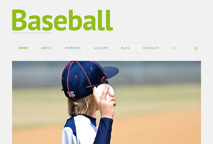 Responsive Baseball WordPress Theme by TemplateMonster