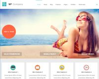 Company WordPress Theme by Theme Junkie