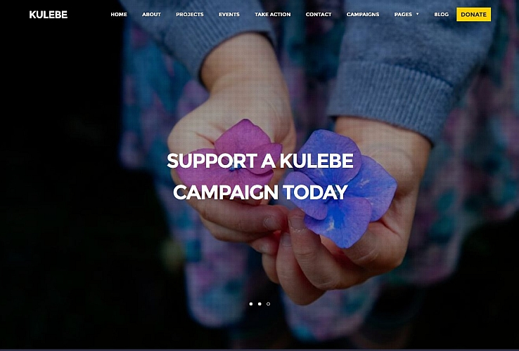 Kulebe WordPress Theme via ThemeForest