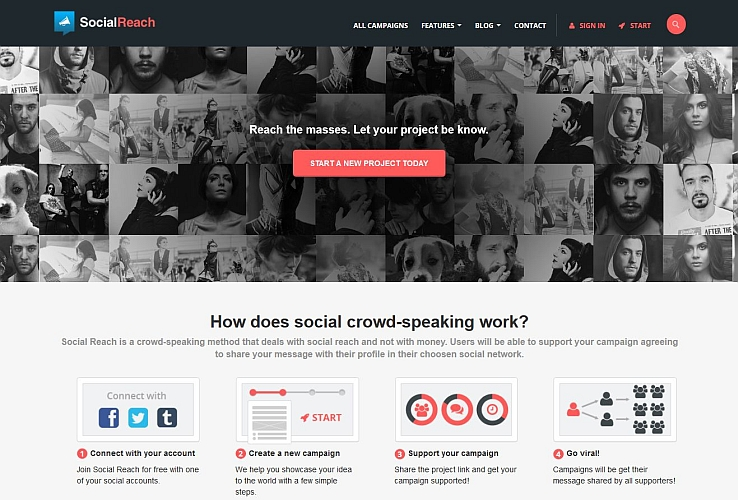 SocialReach WordPress Theme via ThemeForest