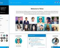 Thrive WordPress Theme via ThemeForest