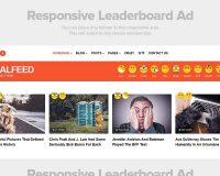 ViralFeed WordPress Theme via ThemeForest