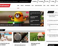 ViralNews WordPress Theme via ThemeForest