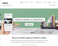 Angle WordPress Theme by WPZoom